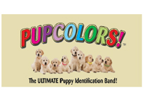 PUP Colors, rcnsw, Rottweiler Club of NSW