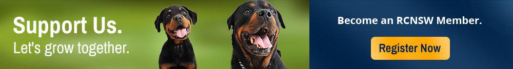 Rottweiler Club of NSW, Rottweiler Club, Rottweiler, Buying a Rottweiler, RCNSW, Breeding Rottweilers